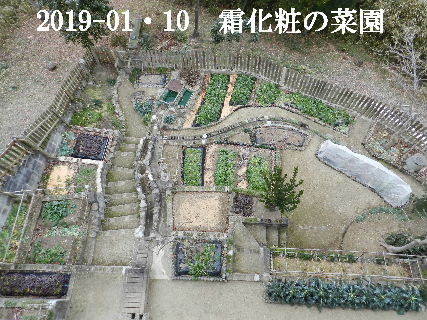 2019-01・10 里山は今日も霜化粧 (1).JPG