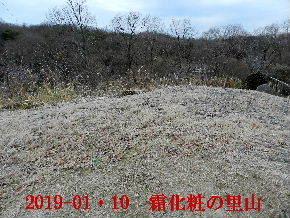 2019-01・10 里山は今日も霜化粧 (3).JPG