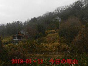2019-01・11 今日の里山は・・・ (4).JPG