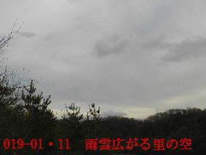 2019-01・11 今日の里山模様 (1).JPG