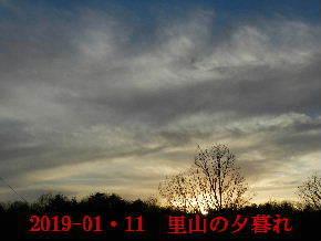 2019-01・11 今日の里山模様 (3).JPG