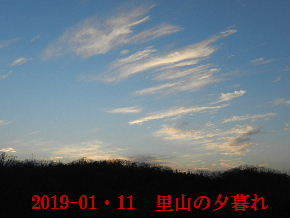 2019-01・11 今日の里山模様 (4).JPG