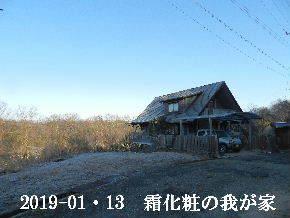 2019-01・13 今日の里山は・・・ (1).JPG