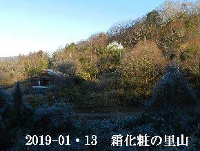2019-01・13 今日の里山は・・・ (4).JPG
