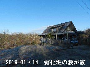 2019-01・14 今日の里山は・・・ (1).JPG