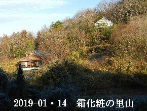 2019-01・14 今日の里山は・・・ (4).JPG