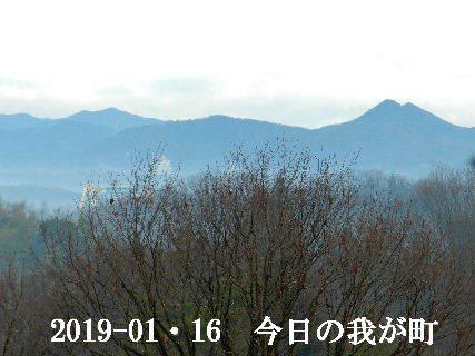 2019-01・16 今日の我が町.JPG
