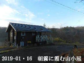 2019-01・16 今日の里山は・・・ (2).JPG