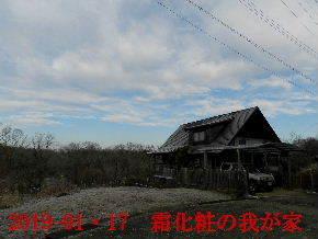 2019-01・17 今日の里山は・・・ (1).JPG