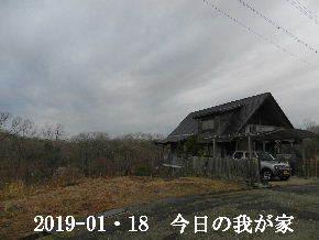 2019-01・18 今日の里山は・・・ (1).JPG