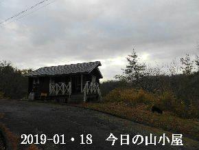 2019-01・18 今日の里山は・・・ (2).JPG