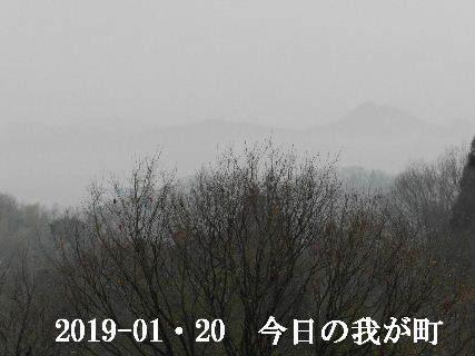 2019-01・20 今日の我が町.JPG