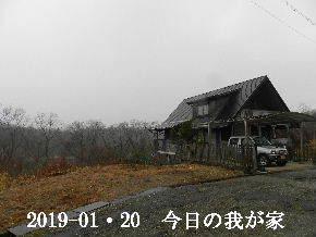 2019-01・20 今日の里山は・・・ (1).JPG