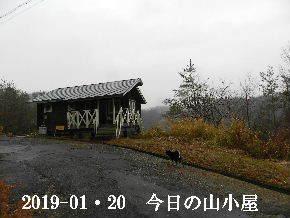 2019-01・20 今日の里山は・・・ (2).JPG