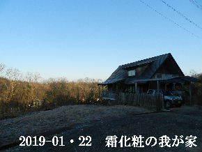 2019-01・22 今日の里山は・・・ (1).JPG
