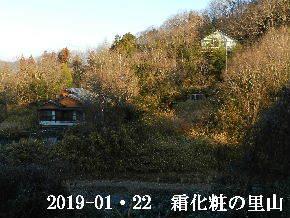 2019-01・22 今日の里山は・・・ (4).JPG