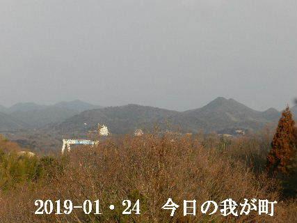 2019-01・24 今日の我が町.JPG