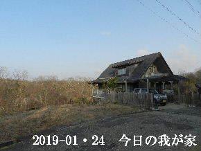 2019-01・24 今日の里山は・・・ (1).JPG