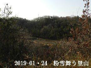 2019-01・24 今日の里山は・・・ (3).JPG