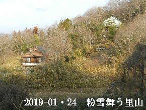 2019-01・24 今日の里山は・・・ (4).JPG