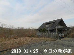 2019-01・25 今日の里山は・・・ (1).JPG