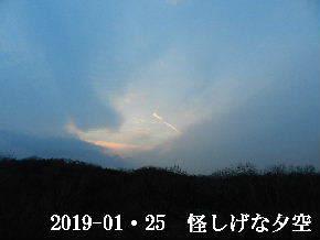 2019-01・25 里山の夕暮れ時 (1).JPG