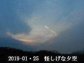 2019-01・25 里山の夕暮れ時 (2).JPG