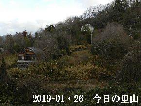 2019-01・26 今日の里山は・・・ (4).JPG