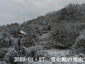 2019-01・27 今日の里山は・・・ (4).JPG