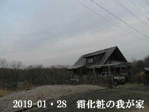 2019-01・28 今日の里山は・・・ (1).JPG