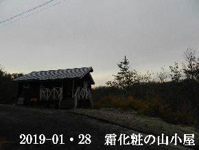 2019-01・28 今日の里山は・・・ (2).JPG