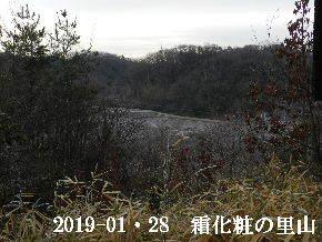 2019-01・28 今日の里山は・・・ (3).JPG