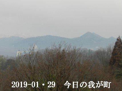 2019-01・29 今日の我が町.JPG
