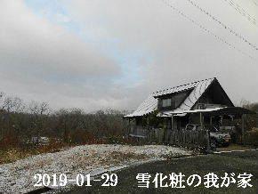 2019-01・29 今日の里山は・・・ (1).JPG
