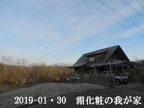 2019-01・30 今日の里山は・・・ (1).JPG