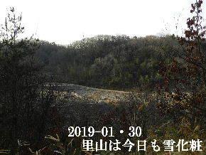2019-01・30 今日の里山は・・・ (3).JPG