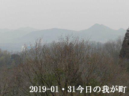 2019-01・31 今日の我が町.JPG