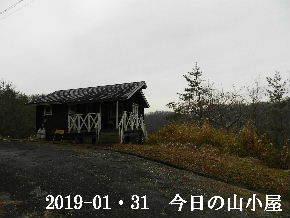 2019-01・31 今日の里山は・・・ (2).JPG