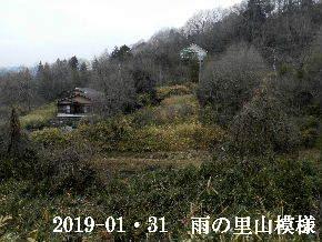 2019-01・31 今日の里山は・・・ (4).JPG