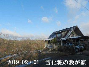 2019-02・01 今日の里山は・・・ (1).JPG