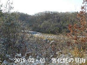 2019-02・01 今日の里山は・・・ (3).JPG