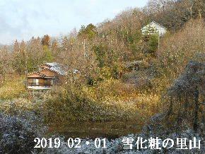 2019-02・01 今日の里山は・・・ (4).JPG