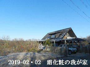 2019-02・02 今日の里山は・・・ (1).JPG