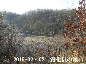 2019-02・02 今日の里山は・・・ (3).JPG