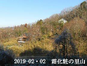 2019-02・02 今日の里山は・・・ (4).JPG