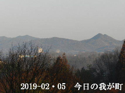 2019-02・05 今日の我が町.JPG