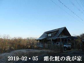 2019-02・05 今日の里山は・・・ (1).JPG
