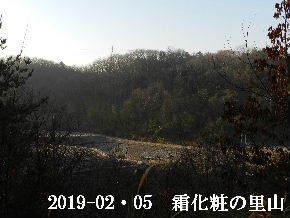 2019-02・05 今日の里山は・・・ (4).JPG