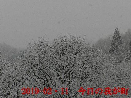 2019-02・11 今日の我が町.JPG