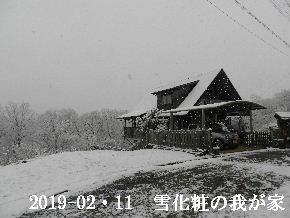 2019-02・11 今日の里山は・・・ (1).JPG